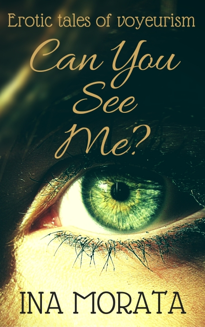 Can You See Me...- kindle cover FINAL 2