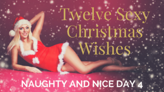 Twelve SexyChristmasWishes4