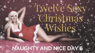Twelve SexyChristmasWishes6